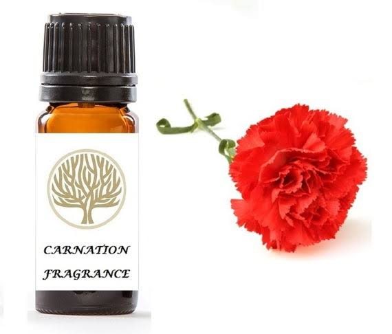 Carnation fragrance amaris chemical solutions