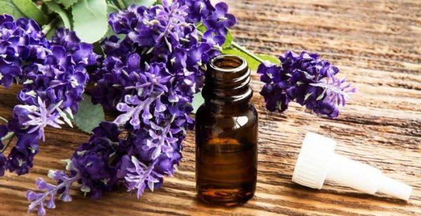 Lavender amaris chemicals