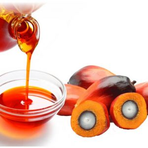 palm-kernel-oil amaris chemical solutions